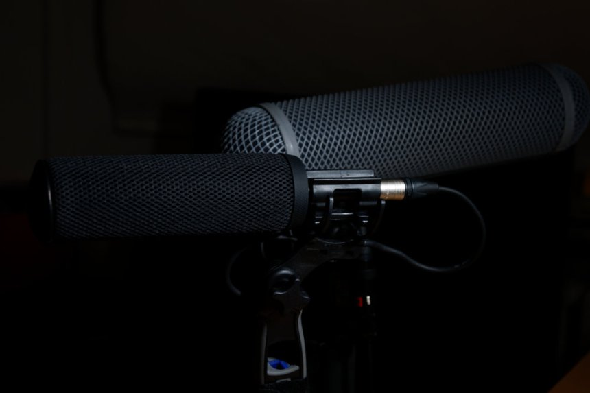 noide reduction with 2 deity s-mic 2 shotgun microphones