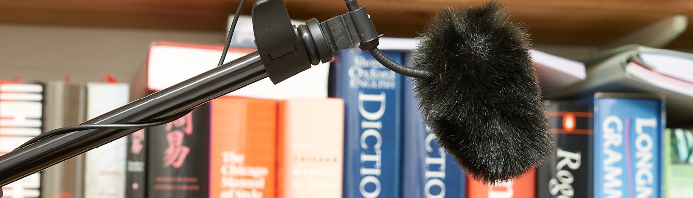 DPA Microphones 4097 CORE Interview Kit – Visuals Producer review